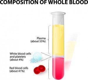 what is platelet rich plasma treatment